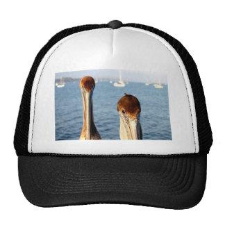 California Pelicans Trucker Hats