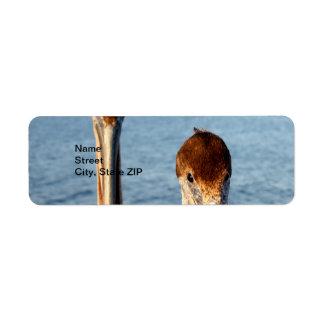 California Pelicans Label