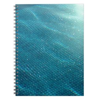 California Pool Notebook