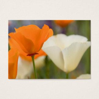 California Poppies 2011 Pocket Calendar (US) Business Card