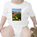 California Poppies Baby Creeper