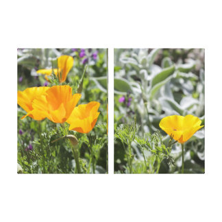 California Poppies Canvas Triptych Art