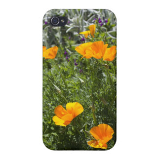 California Poppies in the Garden Case For iPhone 4