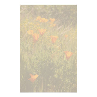California Poppies Meadow Stationery