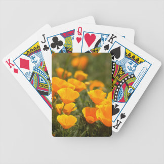 California poppies, Montana de Oro State Park Bicycle Playing Cards