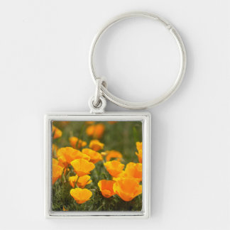 California poppies, Montana de Oro State Park Silver-Colored Square Keychain