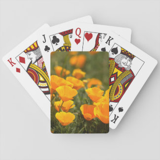 California poppies, Montana de Oro State Park Playing Cards