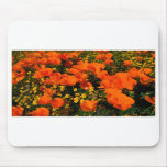 California Poppies Mouse Mats