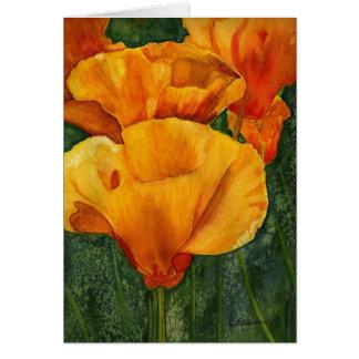 California Poppies notecard