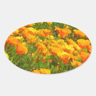 California Poppies Oval Sticker