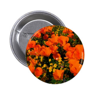 California Poppies Pinback Button