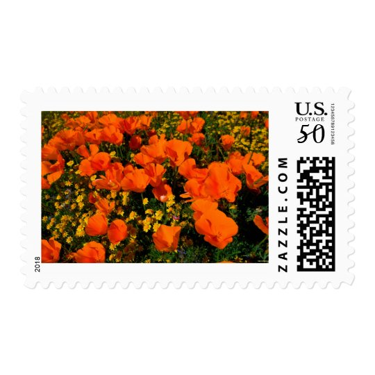 California Poppies Postage