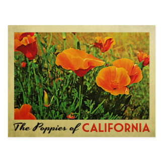 California Poppies Post Card