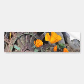 California Poppies Rustic Bumper Sticker