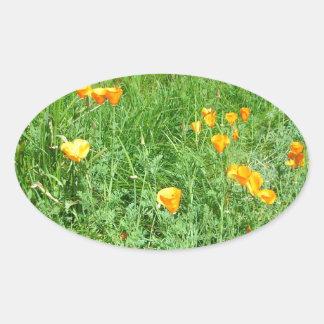 California Poppy #1 Oval Sticker