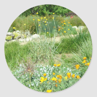 California Poppy #2 Classic Round Sticker