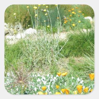 California Poppy #2 Square Sticker