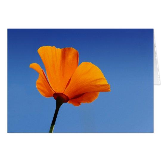 California Poppy Against Blue Sky Card