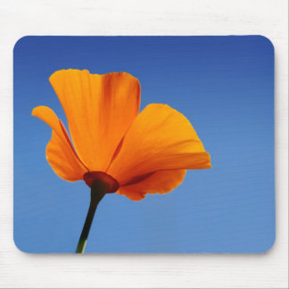 California Poppy Against Blue Sky Mouse Pad