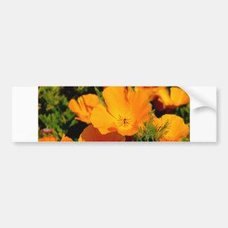 """""""California Poppy"""" Bumper Sticker"""