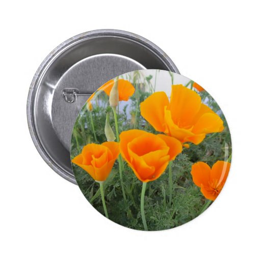 California Poppy Buttons