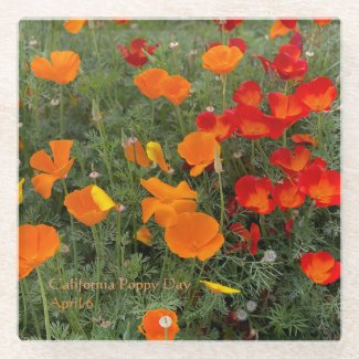 California Poppy Day Glass Coaster