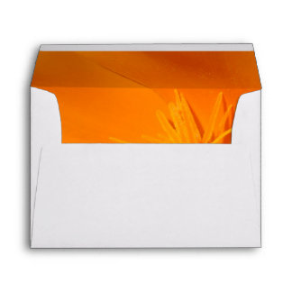 California Poppy Envelope