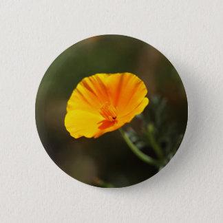 California Poppy (Eschscholzia californica) Pinback Button