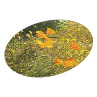 California Poppy Flower Floral Meadow Plate