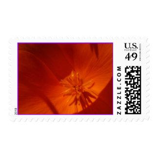 California Poppy Flower Postage