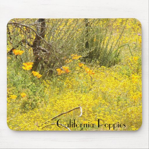 California Poppy Flowers Mousepad