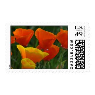 California Poppy Flowers Postage