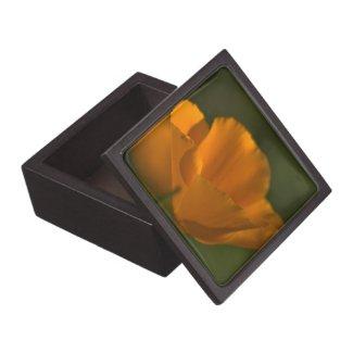 California Poppy Gift Box Premium Trinket Boxes