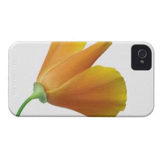 California poppy iPhone 4 case