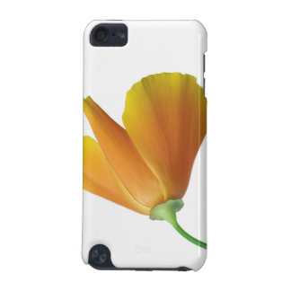 California poppy iPod touch (5th generation) cover