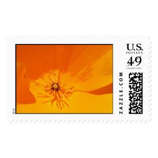 California Poppy Stamp