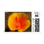 California Poppy postage