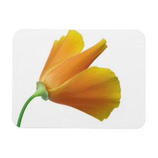 California poppy flexible magnets