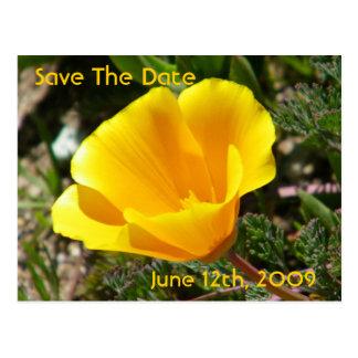 California Poppy Save The Date Postcard