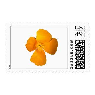 California Poppy Stamps