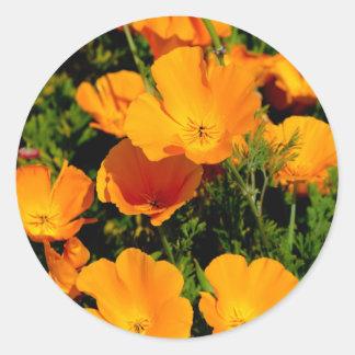 """California Poppy"" Stickers"