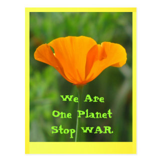 California Poppy Stop War Postcard