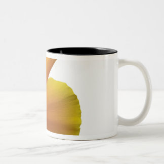 California poppy Two-Tone coffee mug