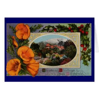 California Poppy Vintage Christmas Greeting Cards
