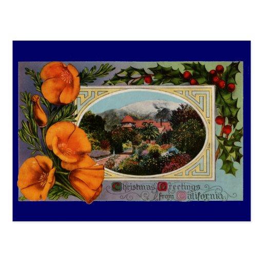 California Poppy Vintage Christmas Postcards