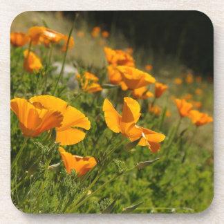 California Poppy Wildflower Flowers Floral Meadow Drink Coaster