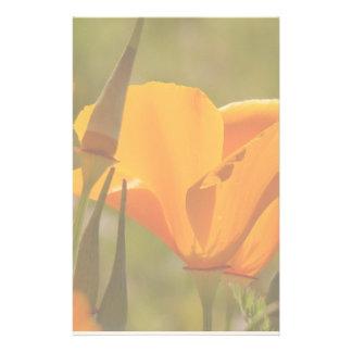 California Poppy Wildflower Flowers Floral Meadow Stationery