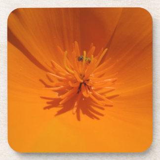 California Poppy with Bee Cork Coaster