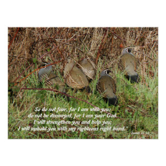 California Quail Birds Isaiah 41:10 Print