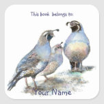 California Quail Birds This book belongs Bookplate Square Sticker